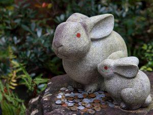 Okazaki Shrine rabbits