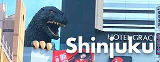 The Best of Shinjuku, Tokyo
