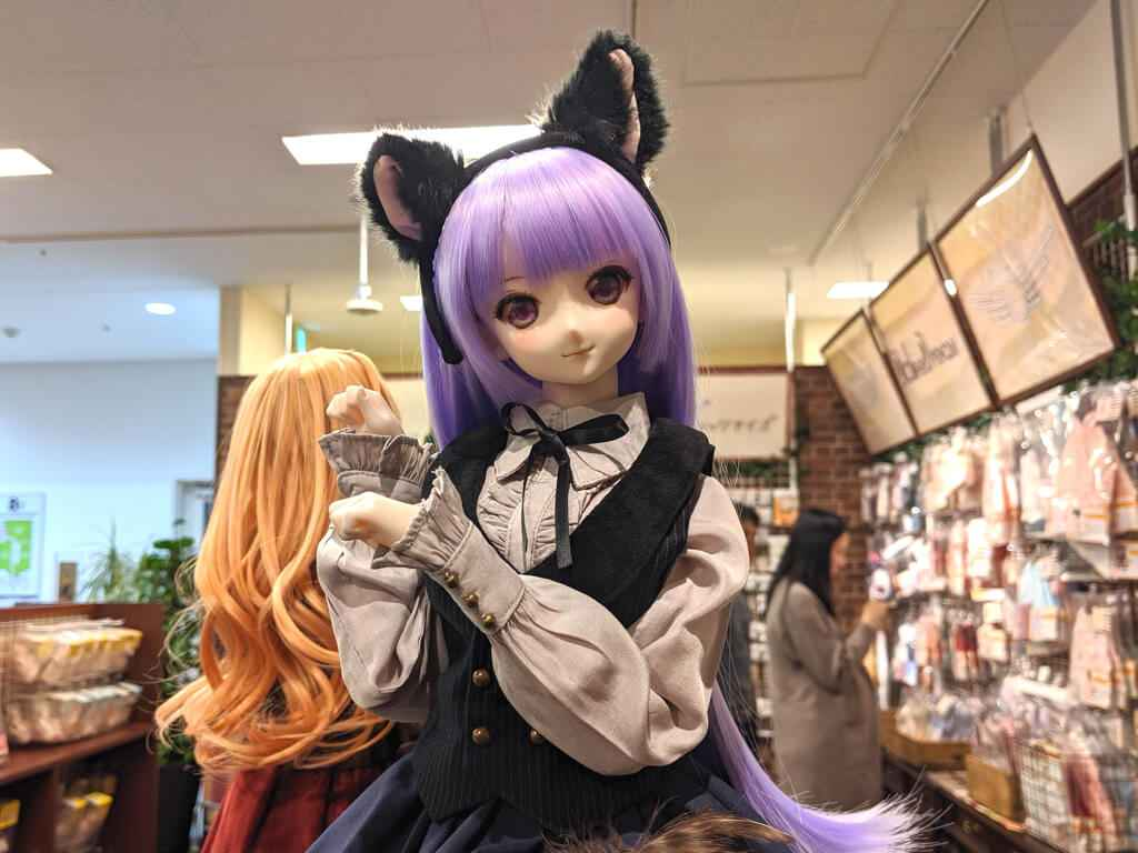 Doll Point Akihabara cat maid