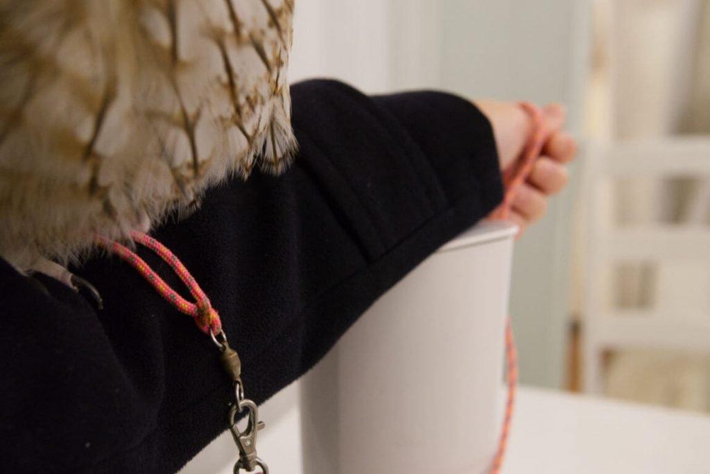 Akiba Fukurou - Holding an owl - Tokyo, Japan