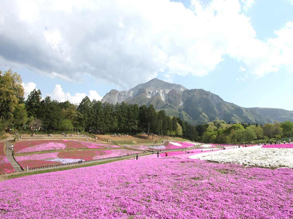 Hitsujiyama Park, ranking 8