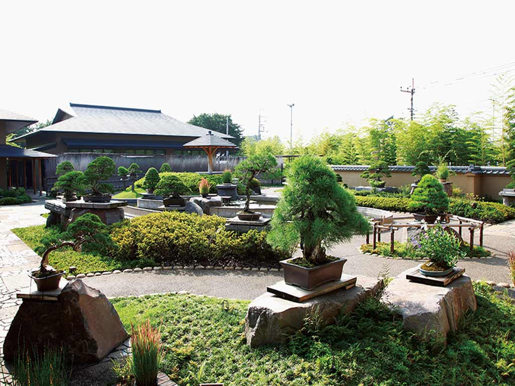 Omiya's Bonsai Village, ranking 7