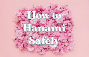 """""""How to Hanami Safely"""" surrounded by pink flowers"""